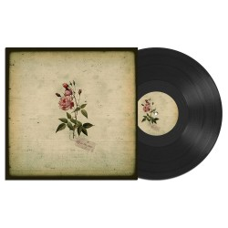 IN THE PINES - s/t - LP